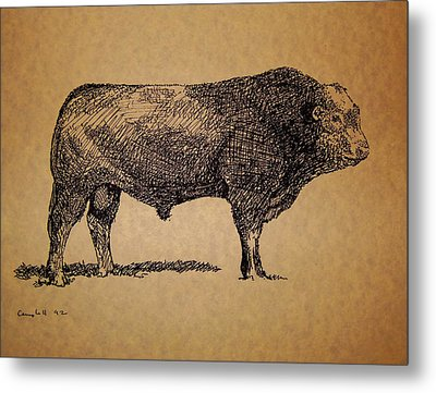 Metal Print featuring the drawing French Limousine Bull by Larry Campbell