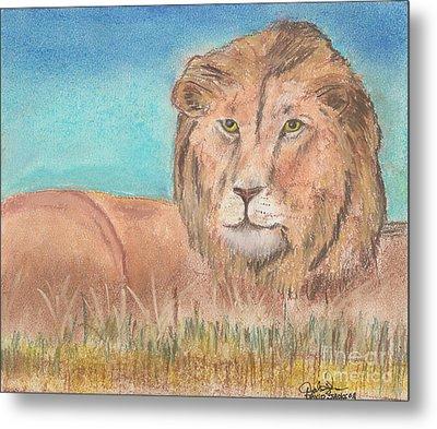 Lion Metal Print by David Jackson