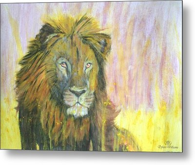 Lion Metal Print by Dylan Williams