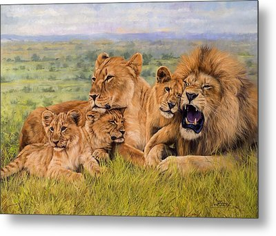 Lion Family Metal Print by David Stribbling