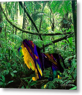 Lion In The Jungle Metal Print by Marvin Blaine