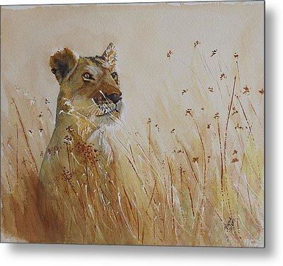 Lion In The Weeds Metal Print
