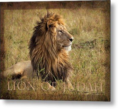 Lion Of Judah Metal Print by June Jacobsen