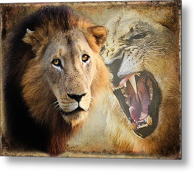 Lion Profile Metal Print by Ronel Broderick