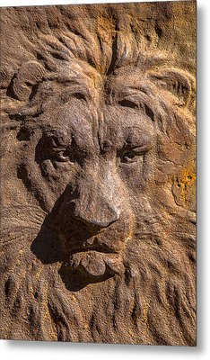 Lion Wall Metal Print by Garry Gay