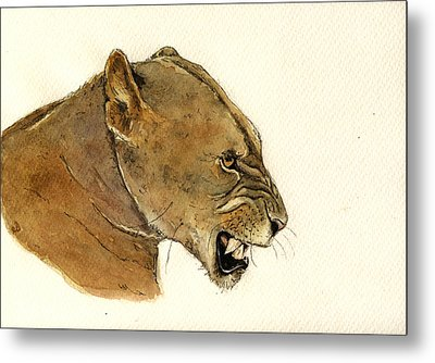 Lioness Metal Print by Juan  Bosco