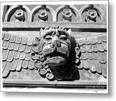 Metal Print featuring the photograph Lions Head by Carsten Reisinger