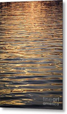 Liquid Gold Metal Print by Elena Elisseeva