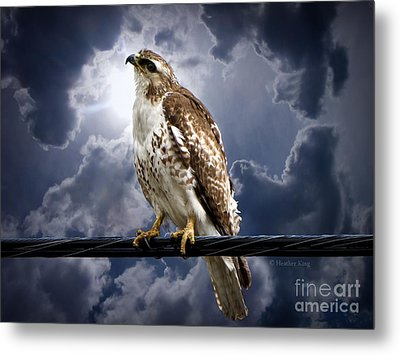 Metal Print featuring the photograph Listening To Gaia by Heather King