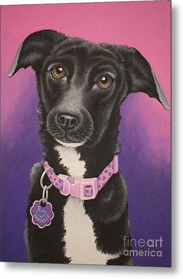 Little Black Dog Metal Print by Tish Wynne