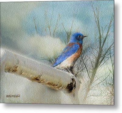 Little Blue Bird Metal Print by Rhonda Strickland