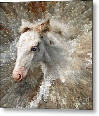 Little Blue Eye Metal Print by Liz  Alderdice