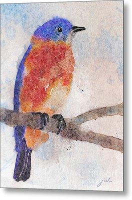 Little Bluebird Metal Print by Joan A Hamilton