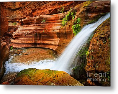 Little Deer Creek Fall Metal Print by Inge Johnsson