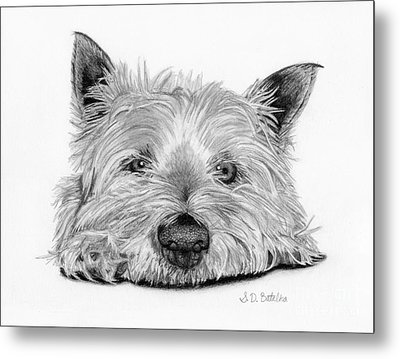 Little Dog Metal Print by Sarah Batalka
