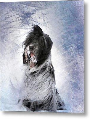 Little Doggie In A Snowstorm Metal Print by Gun Legler