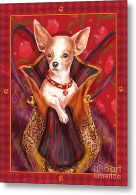 Little Dogs- Chihuahua Metal Print