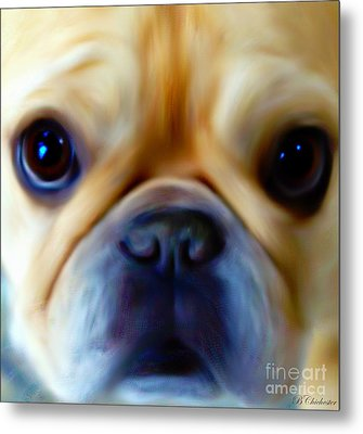 Little Frenchie Face Metal Print by Barbara Chichester