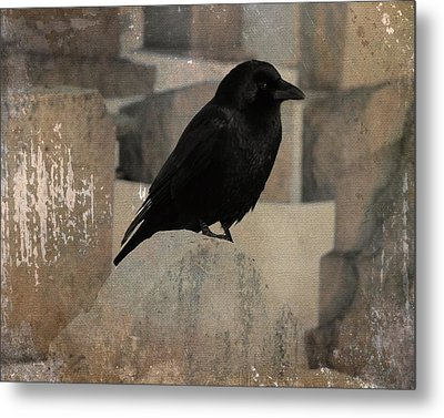 Little Gothic Crow  Metal Print by Gothicrow Images