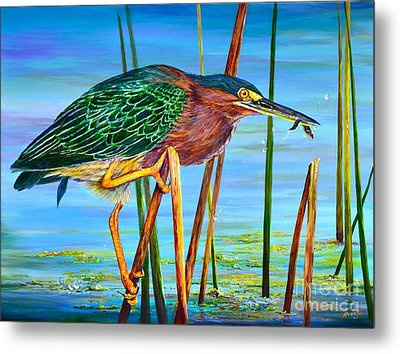 Little Green Heron Metal Print