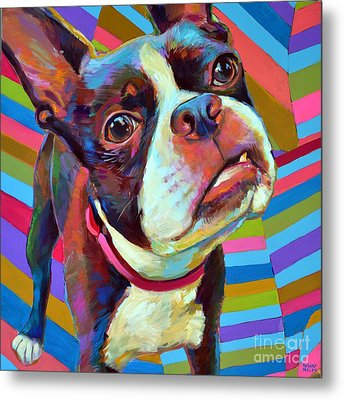 Metal Print featuring the painting Little Hank by Robert Phelps