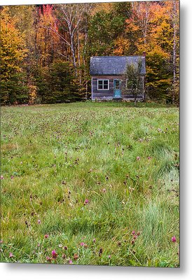 Little House At Woodlands Edge In New Hampshire Metal Print by Karen Stephenson