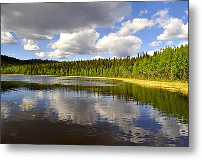 Metal Print featuring the photograph Little Lost Lake by Cathy Mahnke