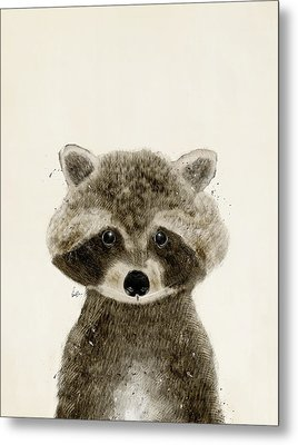 Little Raccoon Metal Print by Bri B