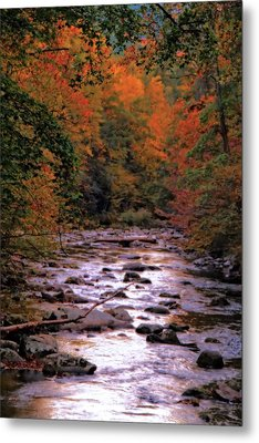 Little River In Autumn Metal Print by Dan Sproul