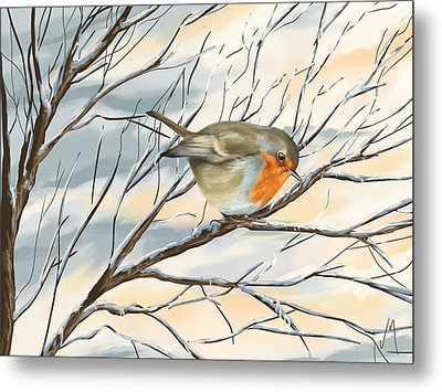 Little Robin Metal Print