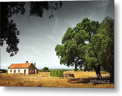 Little Rural House Metal Print by Carlos Caetano