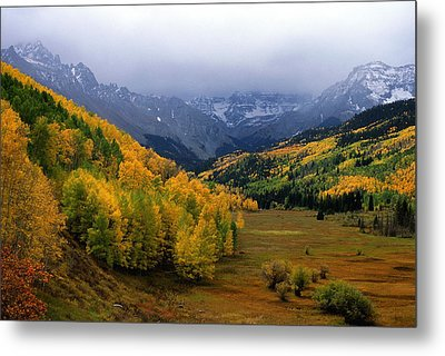 Little Meadow Of The Sublime Metal Print by Eric Glaser