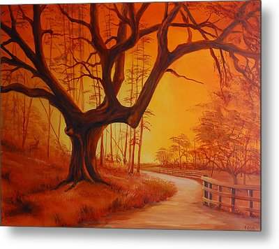 Live Oak At Sunset Metal Print by Rich Kuhn