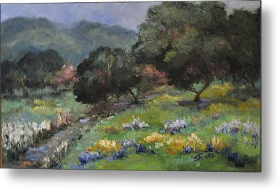 Live Oaks And Wildflowers Metal Print