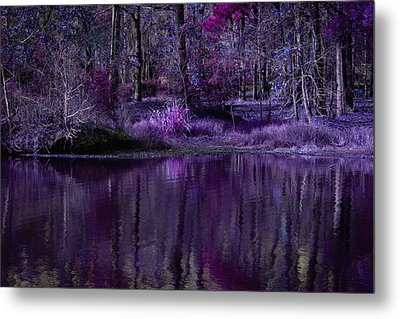 Living In A Purple Dream Metal Print by Linda Unger