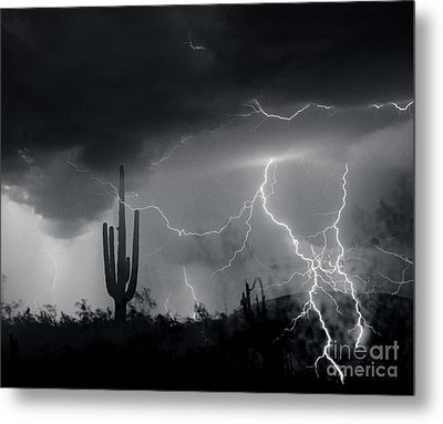 Metal Print featuring the photograph Living In Fear by J L Woody Wooden
