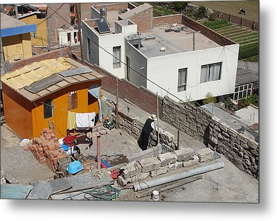 Metal Print featuring the photograph Living On Top by Lew Davis