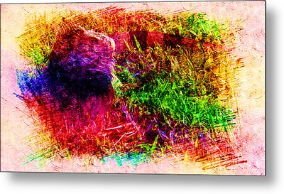 Lizard In Abstract Metal Print