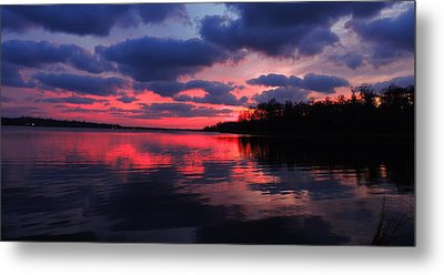 Locust Sunset Metal Print