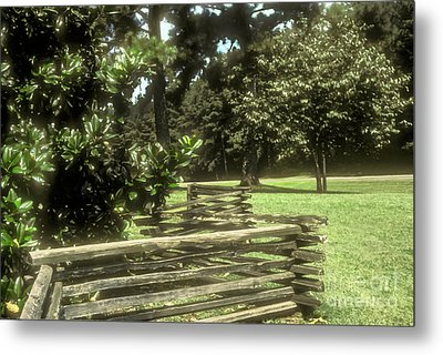 Log Fencing Metal Print by Bob Phillips