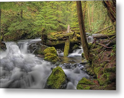 Log Jam Metal Print by David Gn