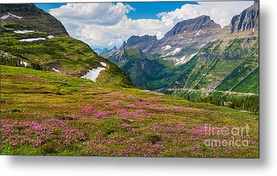 Logan Pass Panorama Metal Print