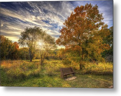 Lone Bench Under Tree - Fall Sunset - Retzer Nature Center - Waukesha Wisconsin Metal Print by Jennifer Rondinelli Reilly - Fine Art Photography