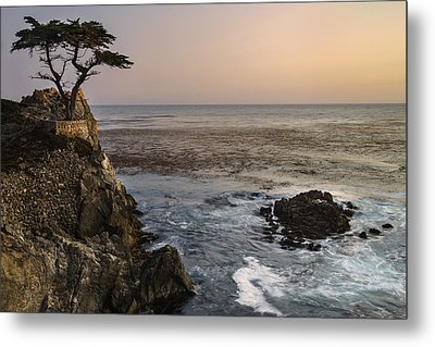 Metal Print featuring the photograph Big Sur - Lone Cypress by Francesco Emanuele Carucci