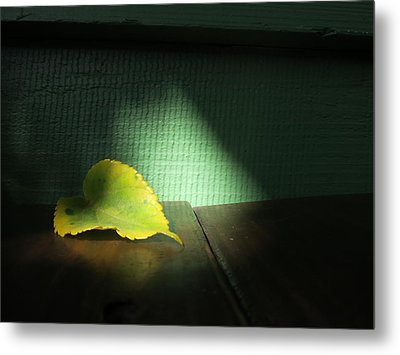 Metal Print featuring the photograph Lone Leaf by Paul Foutz