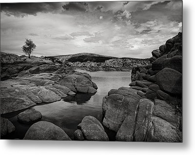 Lone Tree And Watson Lake Metal Print by Jesse Castellano