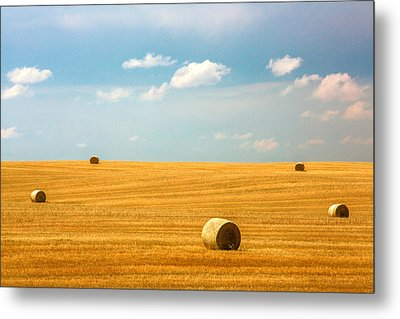 Lonely Fields Metal Print by Todd Klassy