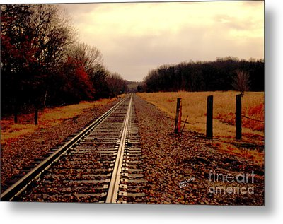 Metal Print featuring the photograph Lonely Journey by Karen Kersey
