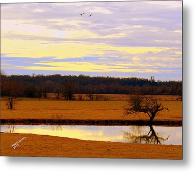 Metal Print featuring the photograph Lonely Pond by Karen Kersey