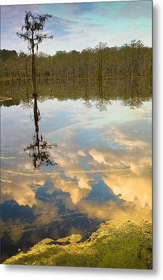 Lonely Reflection Metal Print by Denis Lemay